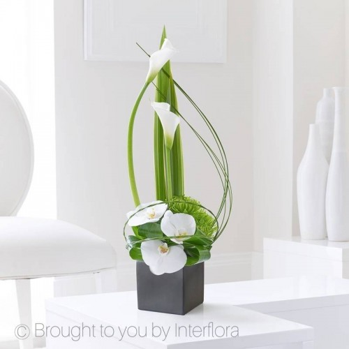 Cool Calla Lily and Orchid Swirl Arrangement