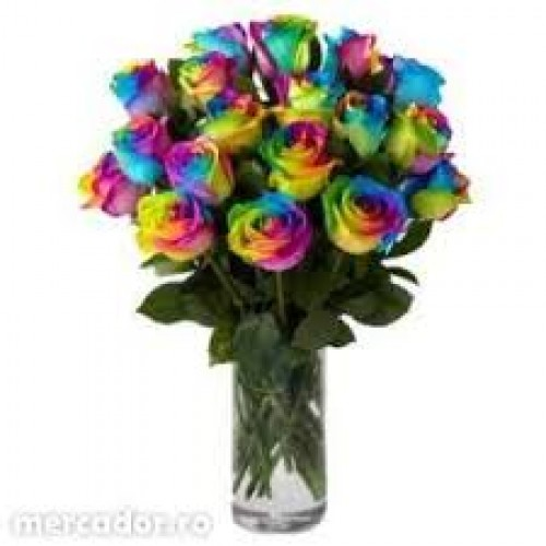 15 Rainbow Rose Bouquet